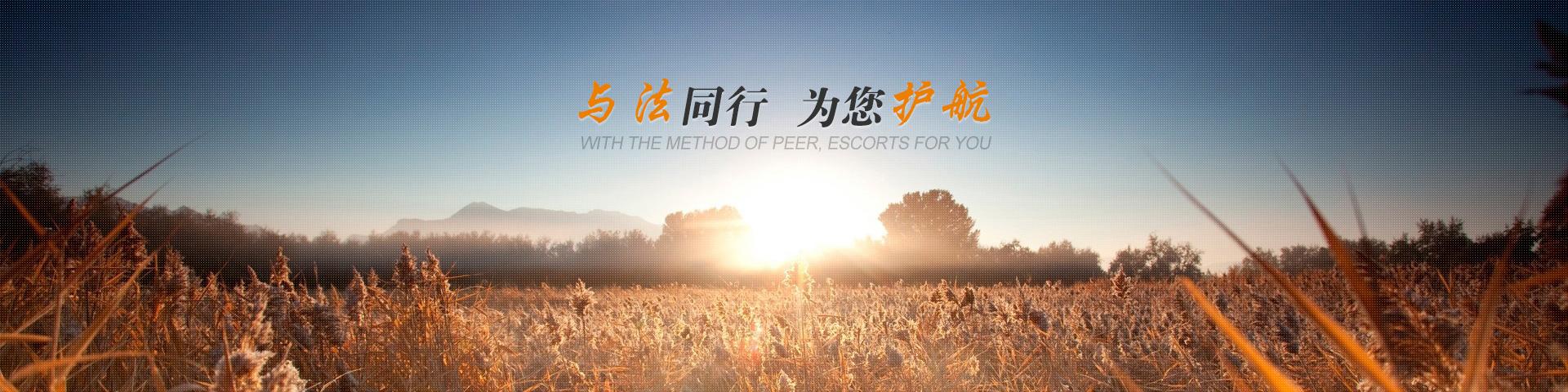 武汉知识产权律师大图二